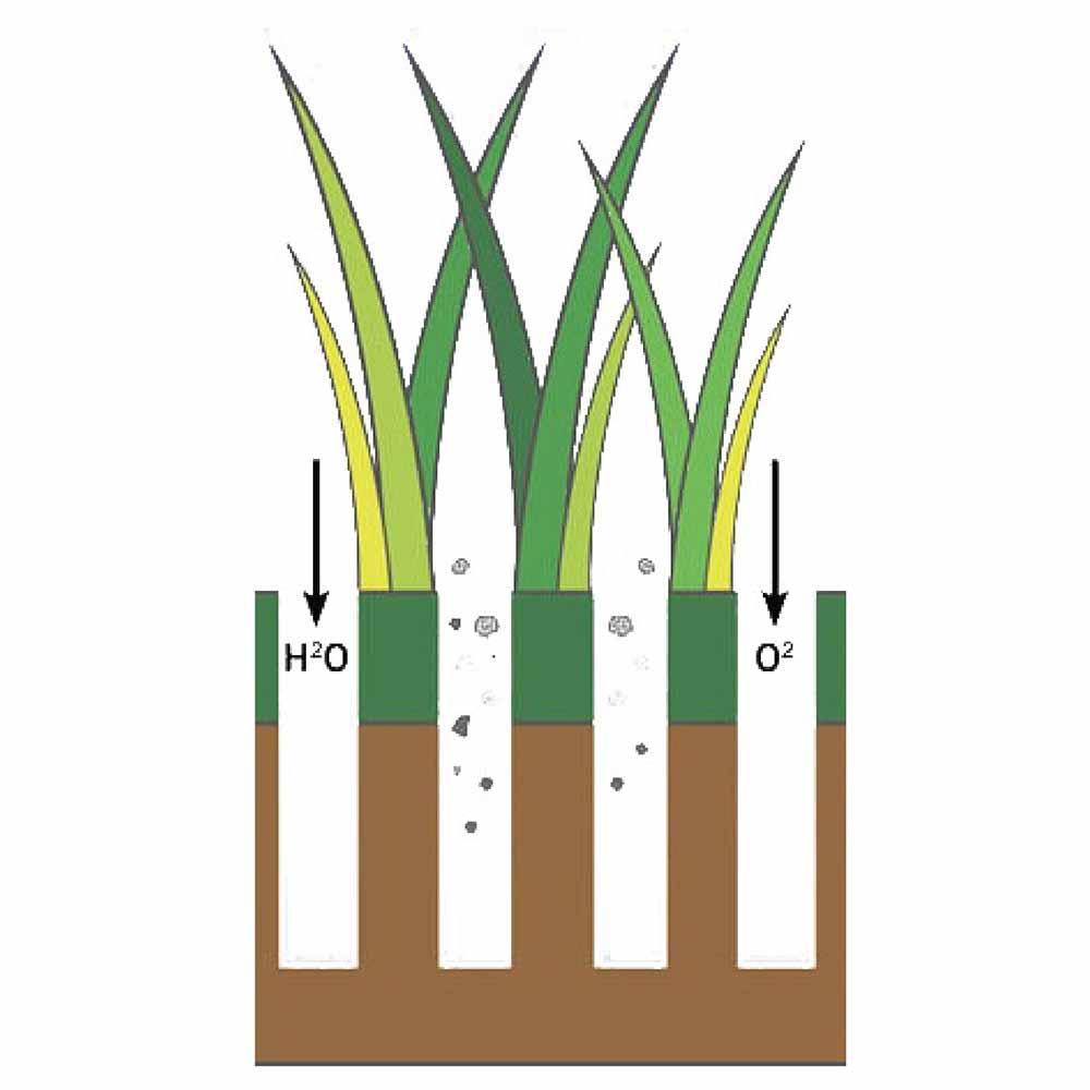 аериране на тревния килим