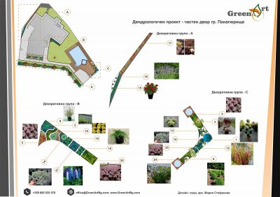 проект растения